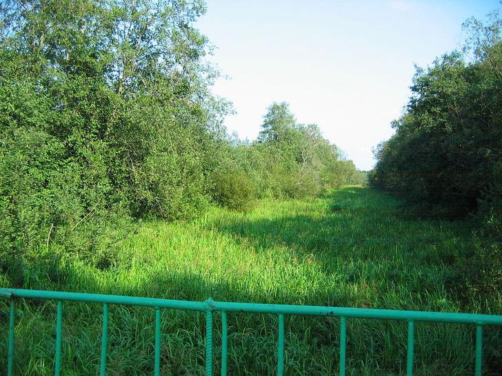 Фото №11 - Грандиозная затея Петра: 14 загадок Староладожского канала