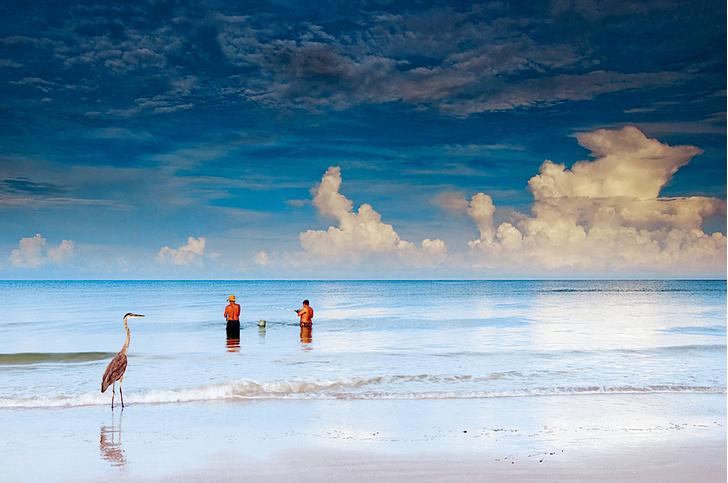 Фото №9 - Флоридские поребрики