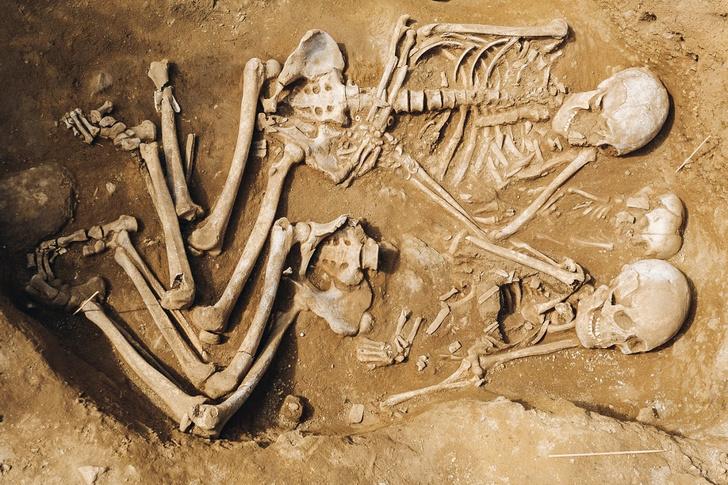 Фото №1 - В Бурятии найдено семейное захоронение возрастом 7000 лет