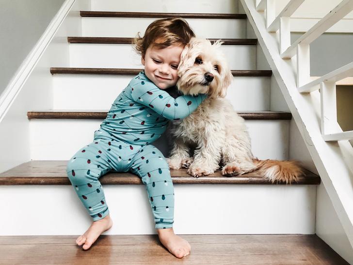 Фото №1 - 5 причин, почему брать кошку или собаку в постель— плохая и опасная идея