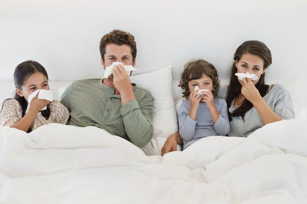 Фото №1 - Семейный доктор: простые советы для помощи детям и взрослым при простуде и гриппе