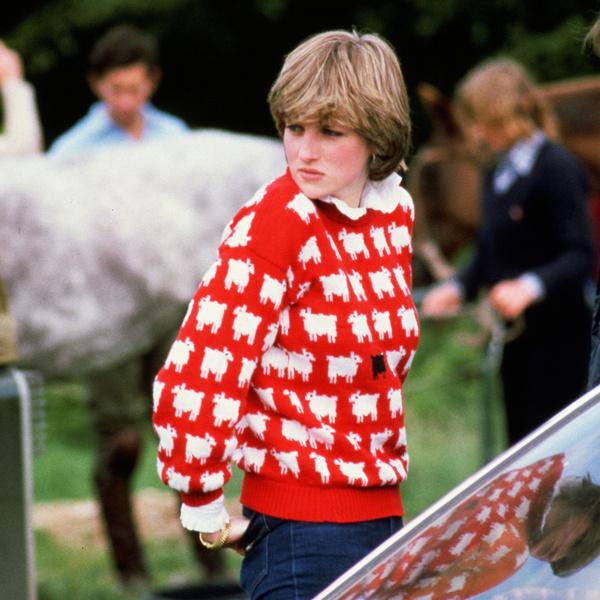 Фото №4 - От принта с «паршивой овцой» до классики: любимые свитеры принцессы Дианы