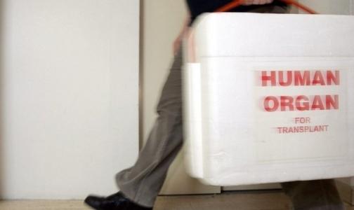 Фото №1 - РПЦ просит россиян дать согласие на изъятие органов после смерти