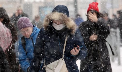 Фото №1 - В Петербурге объявили эпидемию гриппа
