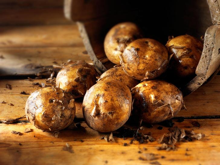 Фото №1 - Ученые доказали, что картофель снижает давление
