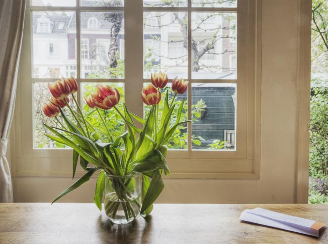 Фото №4 - Как продлить жизнь цветам