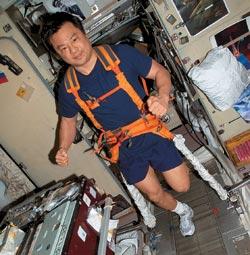 Фото №4 - Как выжить в космосе?