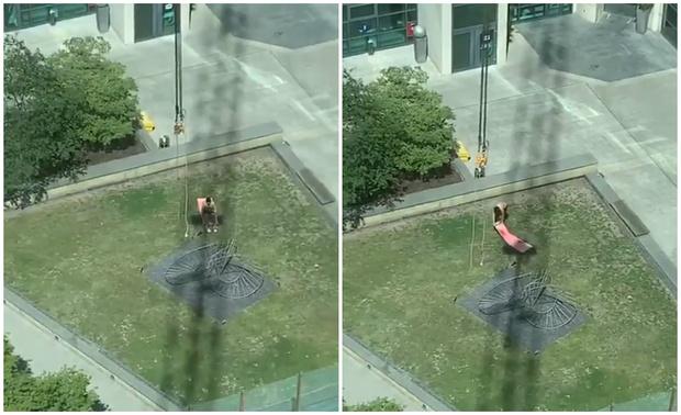 Фото №1 - Оператор подъемного крана мешает гражданину загорать, закрывая краном солнце (видео)