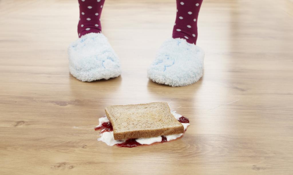 Правило 5 секунд: можно ли на самом деле есть еду с пола