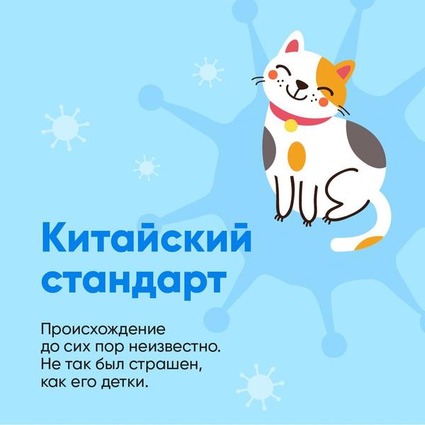 Фото №1 - Биолог Баранова сравнила штаммы коронавируса с милыми котиками: как они выглядят