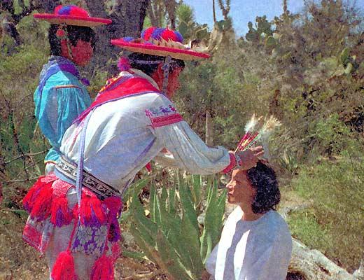 Фото №1 - Мексика