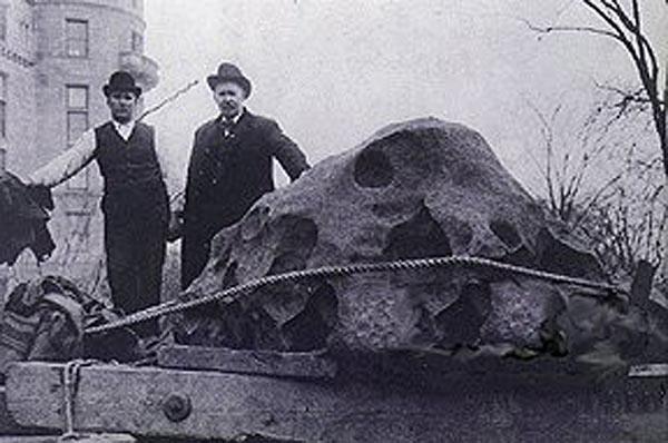 Фото №1 - Железный камень для белого человека