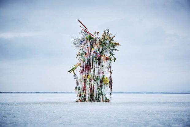 Что нового: в Японии воздвигли инсталляцию из замороженных цветов