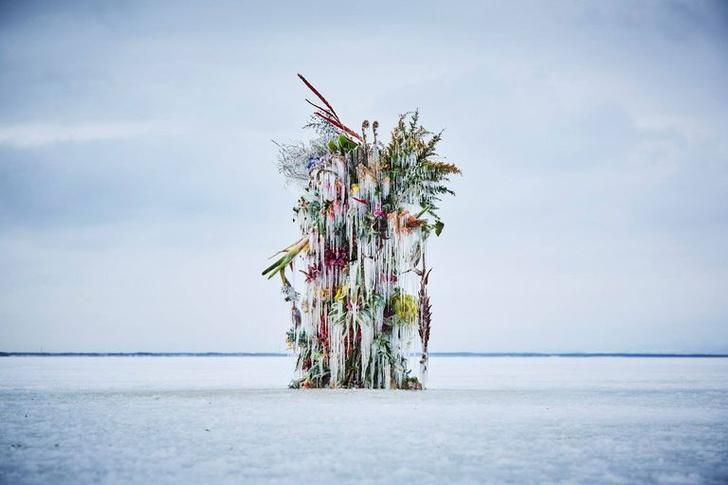 Фото №1 - Инсталляция из замороженных цветов на Хоккайдо