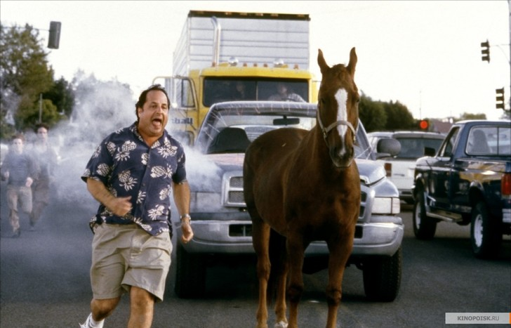 Фото №4 - 15 культовых фильмов со слабым рейтингом