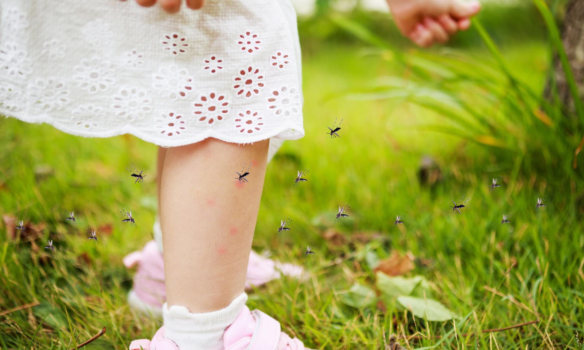 Как защитить ребенка от комаров и мошек дома и на природе