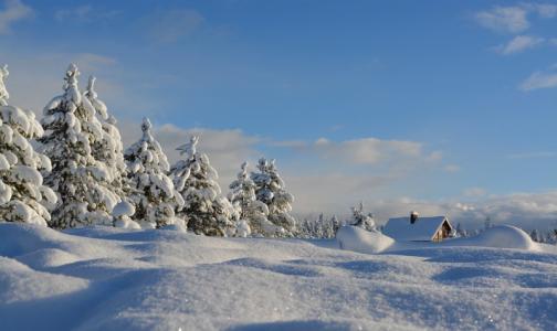 Фото №1 - В Минздраве рассказали, почему зимой люди умирают чаще