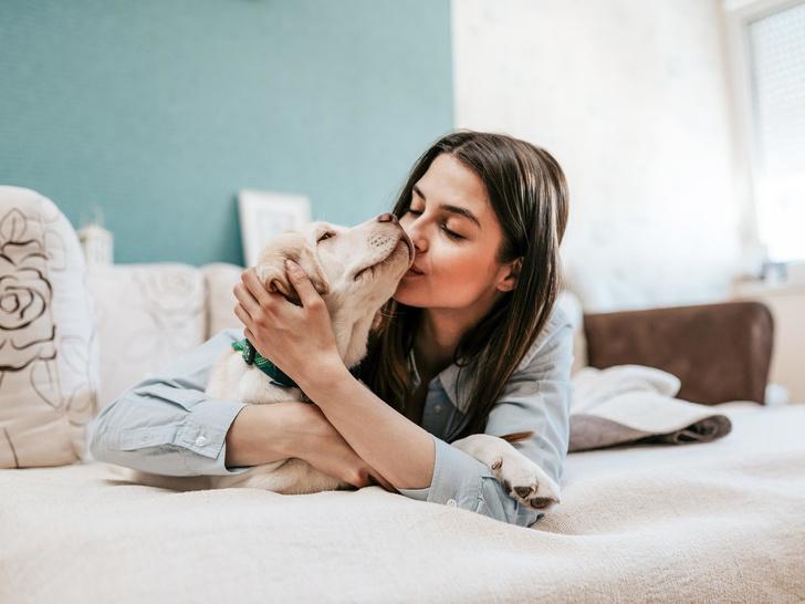 Фото №1 - Любовь в один клик: что такое pet-дейтинг, и как он поможет найти идеального питомца