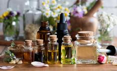 Энциклопедия масел: 23 аромата, привлекающих богатство