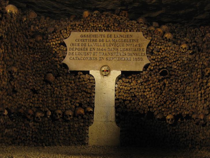Фото №1 - На месте предполагаемого захоронения Людовика XVI найдены человеческие останки