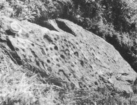 Фото №1 - Камень с большой медведицей