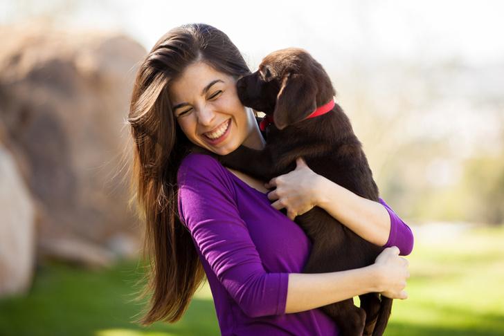 Фото №1 - Facebook нашел различия в характерах «собачников» и «кошатников»