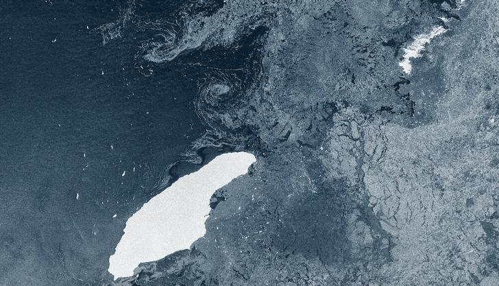 Фото №1 - Массивный айсберг угрожает отдаленной колонии пингвинов