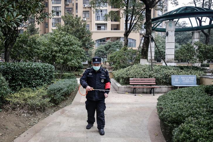 Фото №3 - Разбираемся: что такое новый коронавирус из Китая и стоит ли его бояться