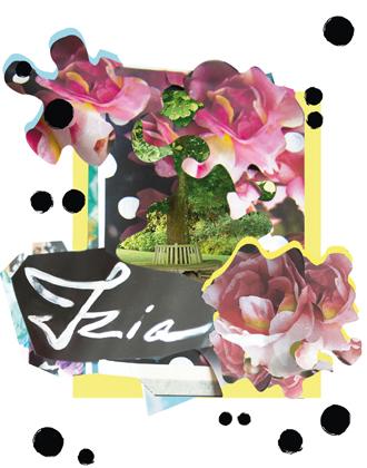 Фото №11 - Розы из сада д'Орнано: аромат Izia от Sisley