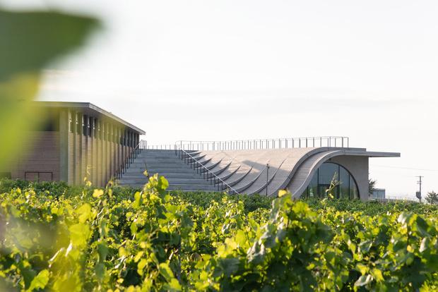 Фото №2 - Винодельня со смотровой площадкой на крыше в Чехии
