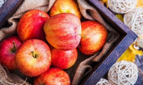 Фото №1 - Эксперты: Многие люди заблуждаются относительно пользы яблок