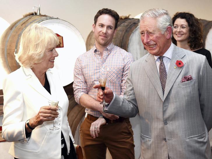 Фото №4 - Нападение на принца: забавное фото с Камиллой, «угрожающей» Чарльзу, стало вирусным