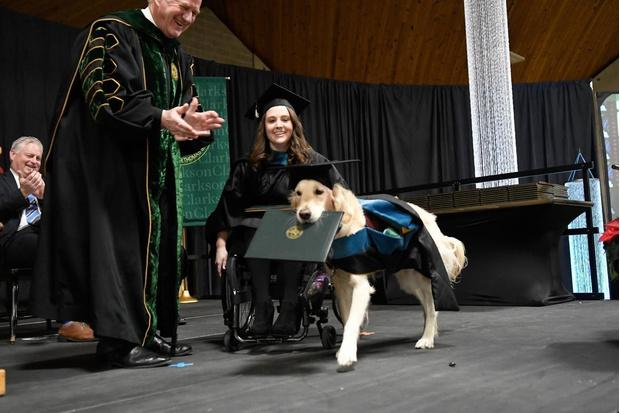 Фото №1 - Самый милый студент: в США собака получила диплом магистра