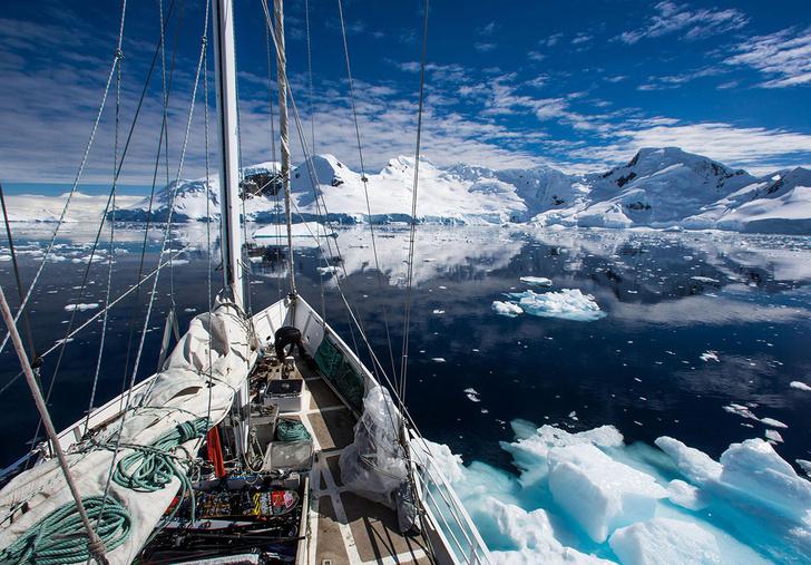 Фото №1 - В водах Антарктики