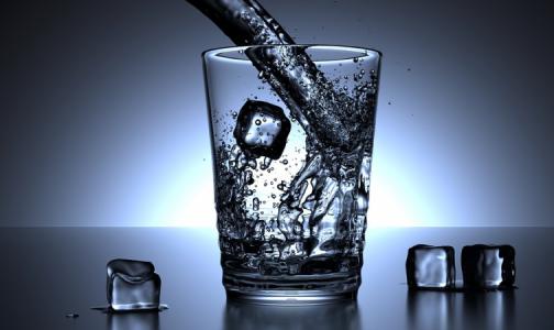 Фото №1 - Ученые: любовь к алкоголю досталась людям по наследству. От обезьян