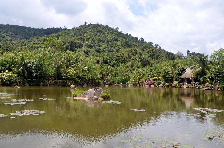 Фото №4 - В гармонии с природой: богатства тропического острова Хайнань