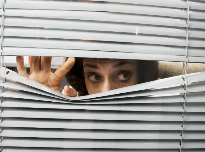 Фото №4 - Как наладить отношения на работе, если вы интроверт