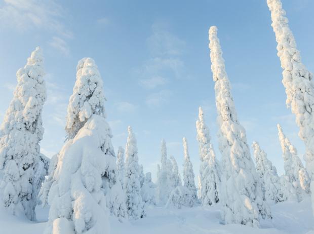 Фото №4 - Let it snow: самые снежные страны
