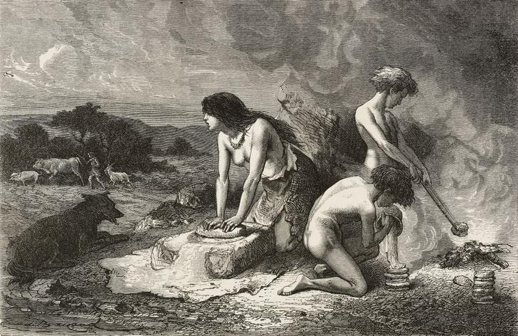 Фото №1 - Какой была диета каменного века