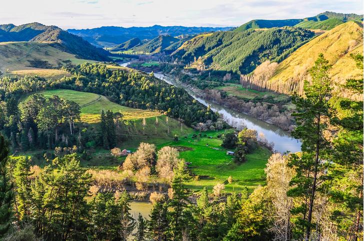 Фото №1 - В Новой Зеландии реку уравняли в правах с человеком