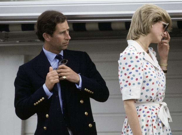 Фото №7 - 8 веских причин, почему британцы не хотят видеть принца Чарльза на троне