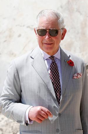 Фото №5 - Принц Чарльз рассказал, чем он не будет заниматься, когда станет Королем