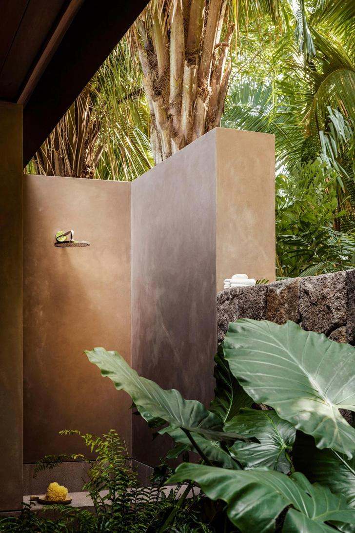 Фото №10 - Отель в тропическом лесу в Мексике