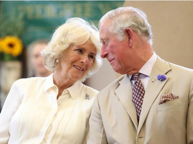 Фото №1 - Почему эта годовщина свадьбы Чарльза и Камиллы станет для них особенно счастливой