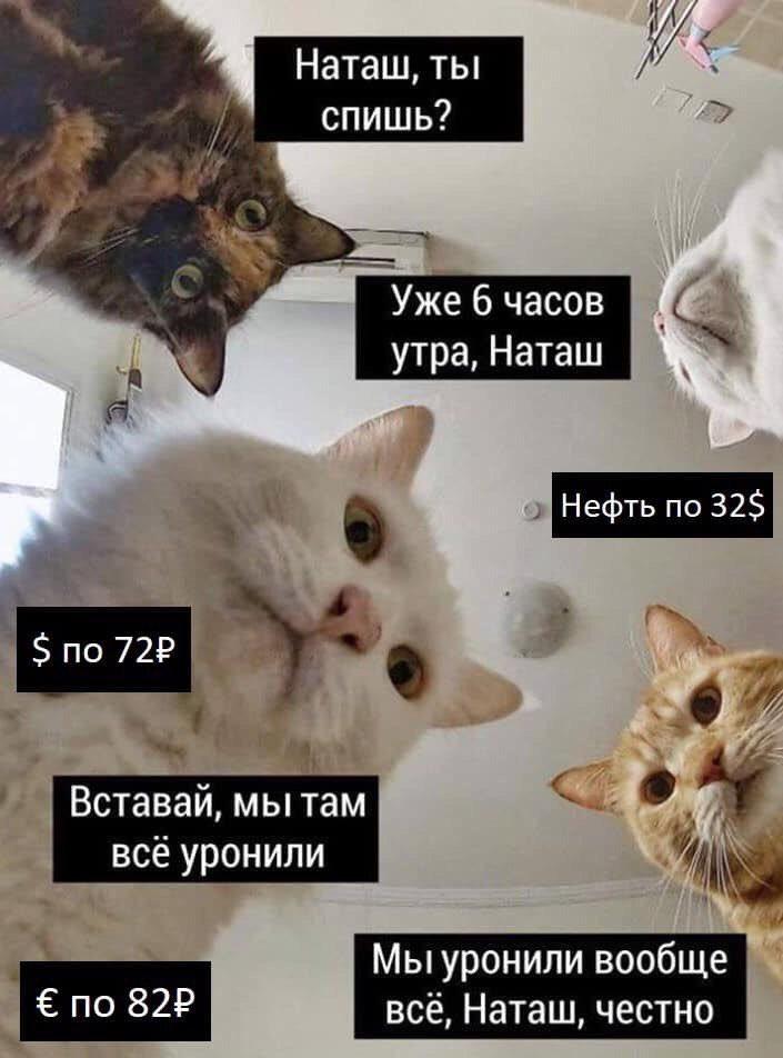 Фото №2 - 5 простых сервисов для создания мемов без владения «Фотошопом»
