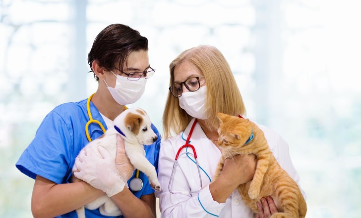 Вакцинация животных от коронавируса