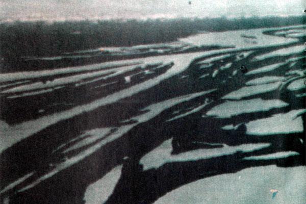 Фото №1 - По Амазонке вверх