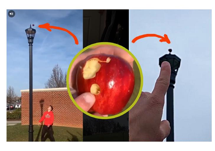 Фото №1 - Парень 5 дней пытался ловким броском насадить яблоко на верхушку фонаря, и у него получилось (видео)