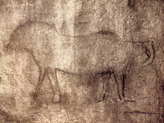 Фото №1 - Древнейший художник земли