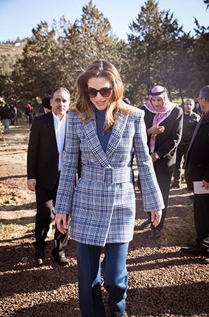 Фото №3 - Как королева Рания выбирает наряды (и почему она так редко говорит о моде)